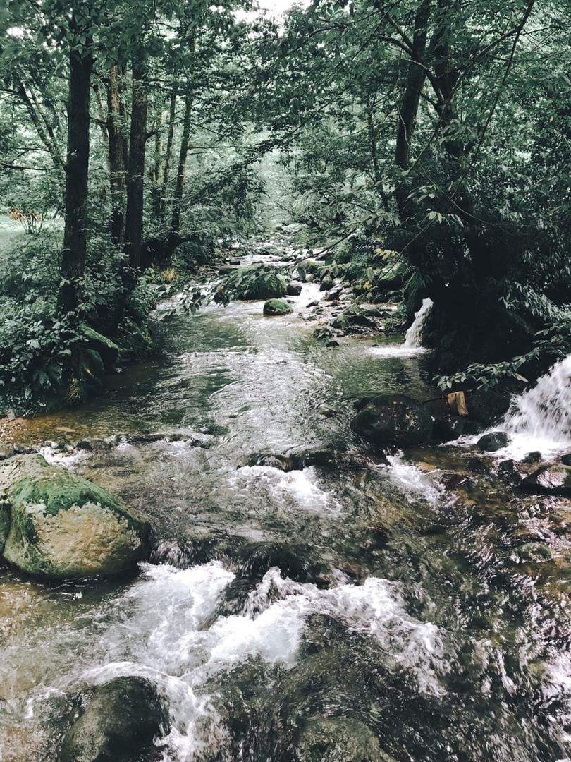 В Грузии туристы смотрят и на горы, и на реки, и на море