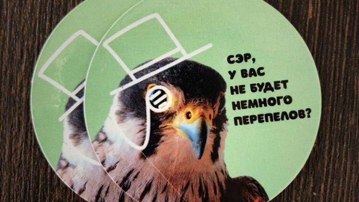«Семки есть?»: новосибирские волонтёры выпустили смешные магниты с хищными птицами