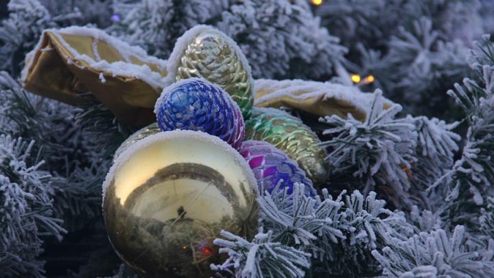 Ёлка, гирлянды и мандарины: за месяц до Нового года красноярцы начали украшать дома