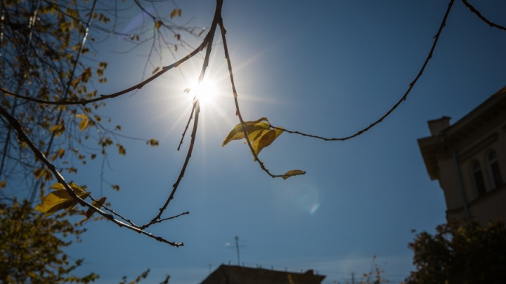 Не слишком бабье лето: тепло вернётся в Новосибирск всего на 3 дня