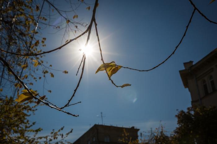 В ближайшие дни в Новосибирске воздух прогреется до 17 градусов