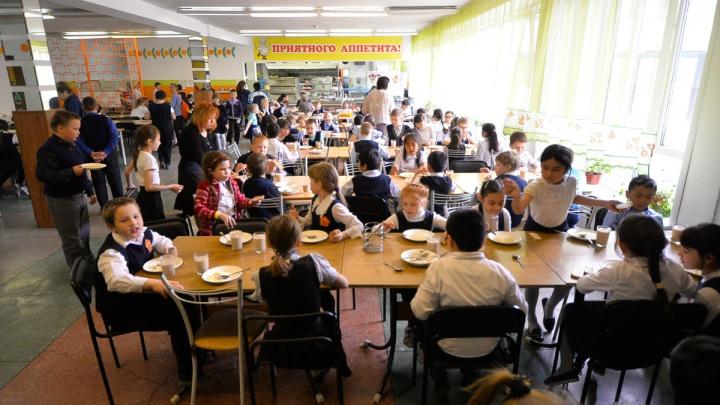В Свердловской области разоблачили картель, который зарабатывал на продаже еды для школьников