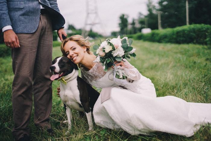 Подготовка к свадьбе— довольно нервное занятие для пары, зато можно расслабиться на фотосессии с любимым псом