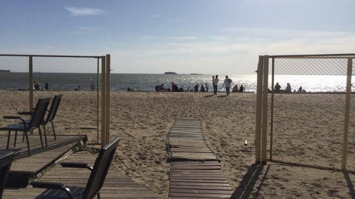На месте сгоревшего пляжного бара в Академгородке открыли новое заведение
