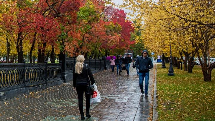 Бабье лето уходит: к Новосибирской области приближаются дождь и мокрый снег