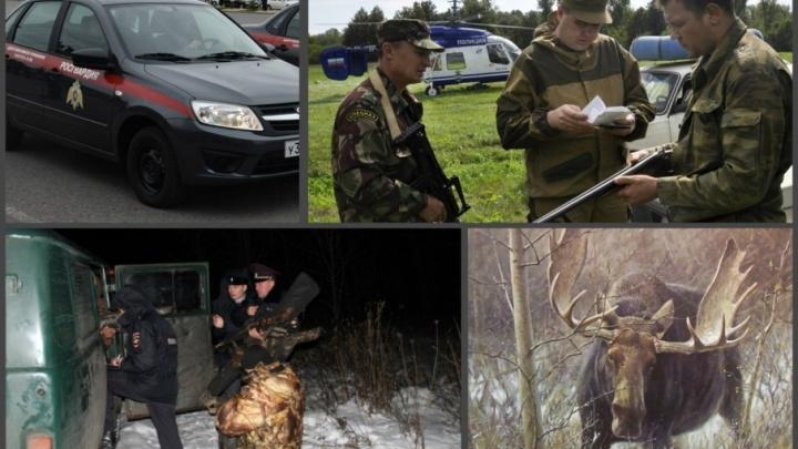 Полицейские поймали в лесах Башкирии браконьера