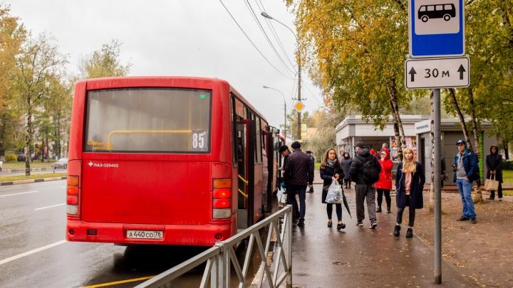 Ярославцы отомстили за подорожание проезда в автобусах, пересев на маршрутки