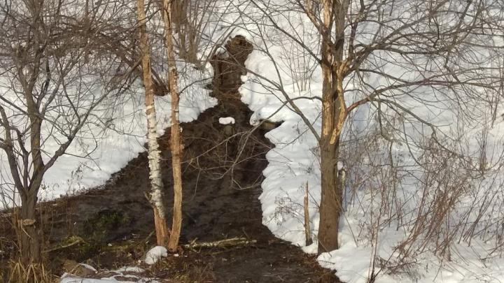 Коттеджный посёлок из Ярославской области слил канализацию рядом с Которослью