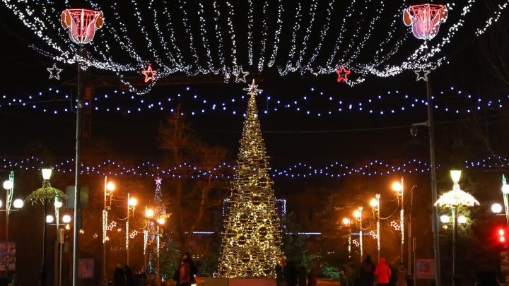 «Марафон начался»: в Волгограде строят елочные базары и наряжают городские деревья