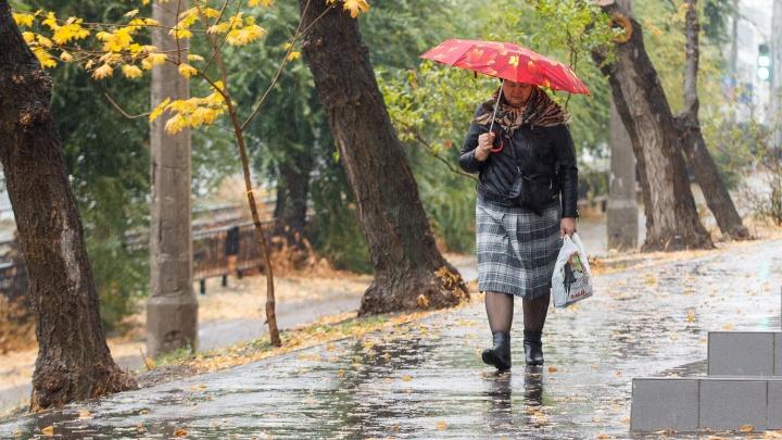 Лекарство от осенней хандры: смотрим фото залитого дождем Волгограда