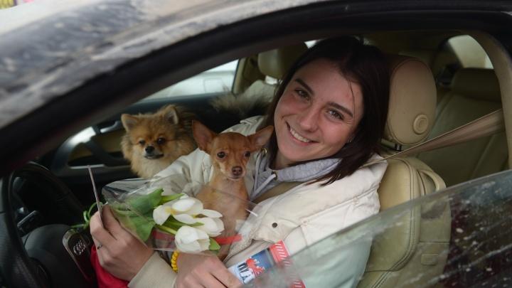 «Разрешите вас поздравить»: инспекторы ГИБДД тормозили женщин-водителей, чтобы подарить цветы