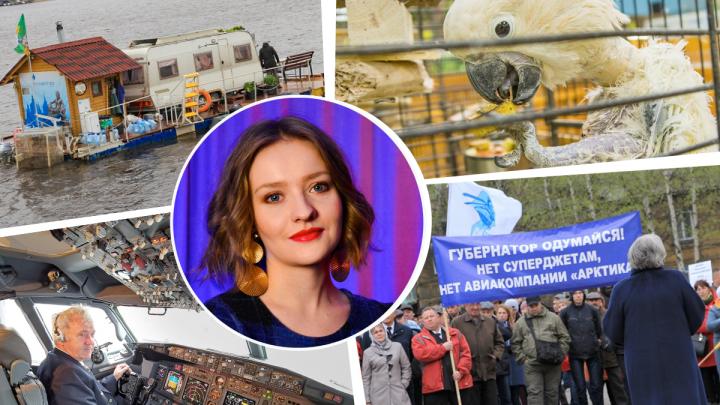 Авиаторы, брошенные животные и герои нашего времени: журналист 29.RU — о том, каким был 2019 год