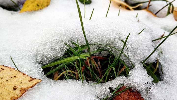 На Шиесе утеплились: смотрим, как в Архангельской области встречают первый настоящий снегопад