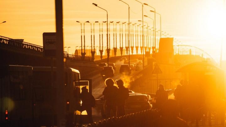 Три компании сговорились на торгах ради охраны омского метро