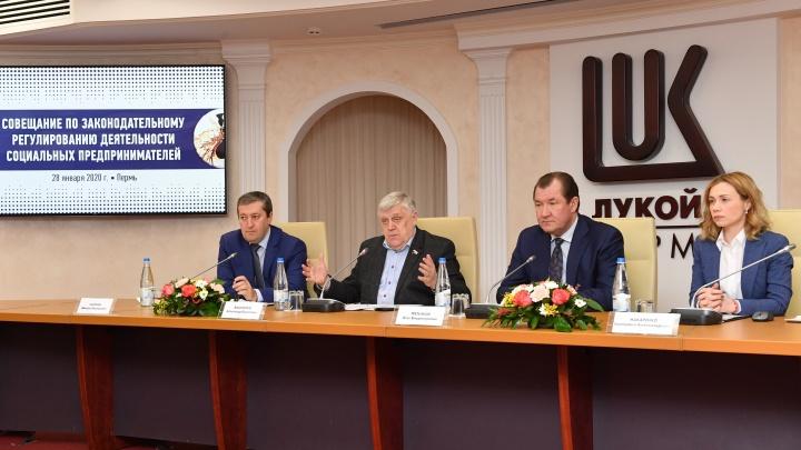 Депутаты Госдумы в Перми обсудили работу социальных предпринимателей