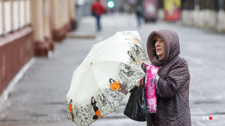Волгоградскую область накроют сильный ветер и грозовые дожди при+23ºC