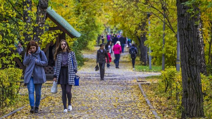 В Новосибирск идёт потепление