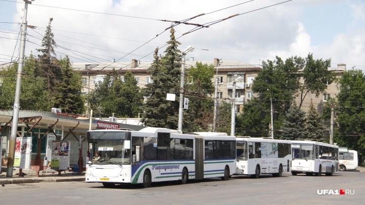 Больше автобусов богу автобусов: автопарк «Башавтотранса» пополнили 50 новеньких Ford Transit