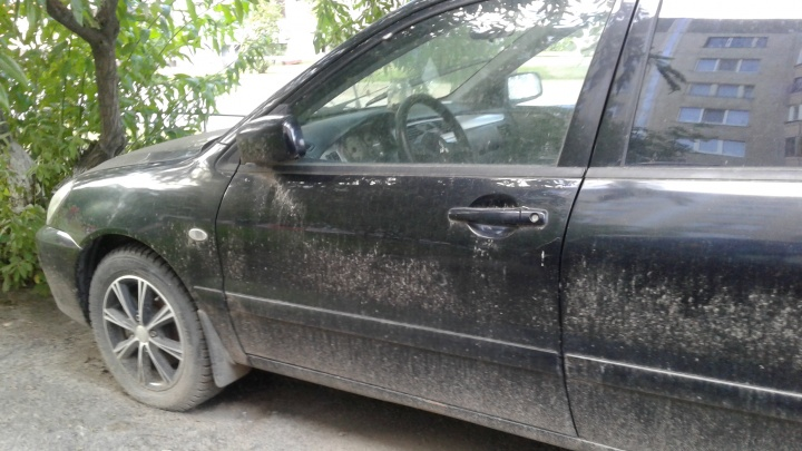 Чиновники сдали тюменцу соседку, просившую увезти со двора брошенную им машину