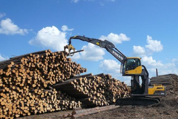 В компании закупили 134 единицы самой современной лесозаготовительной техники