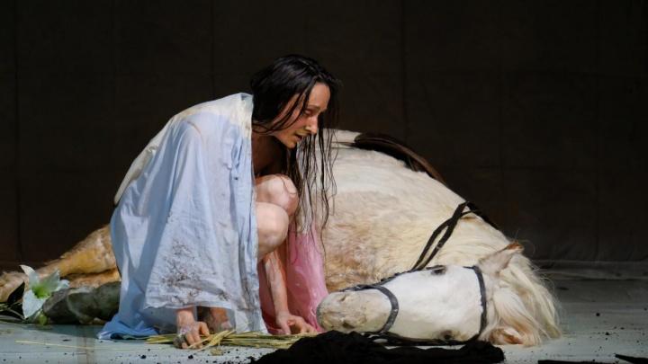 Три пермских театра выдвинули на премию «Золотая маска — 2019»