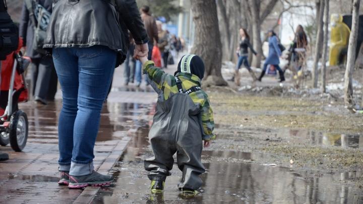 Дожди задержатся: в Новосибирск надолго пришла сырая и тёплая погода