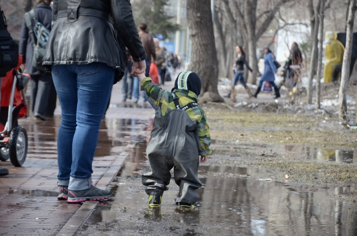 Несколько дней подряд в Новосибирске будет идти дождь