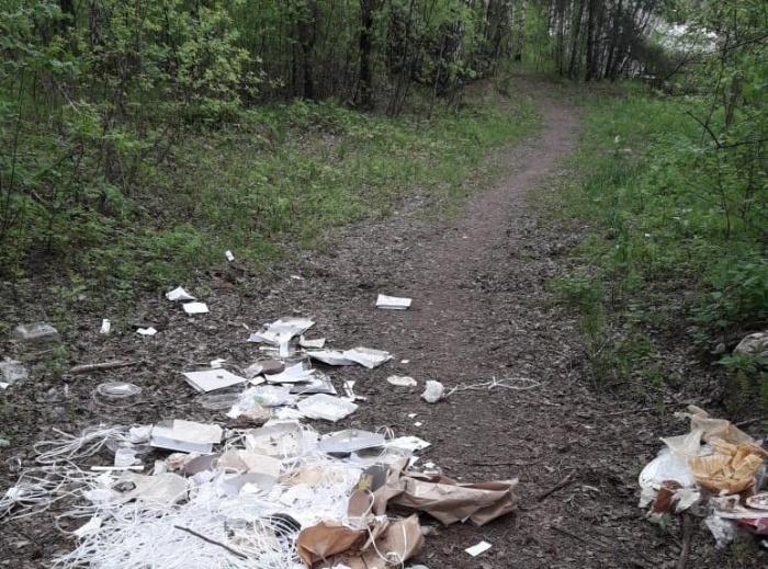 Прохожие винят в свалке мусора сотрудников магазина«Скоморохи»