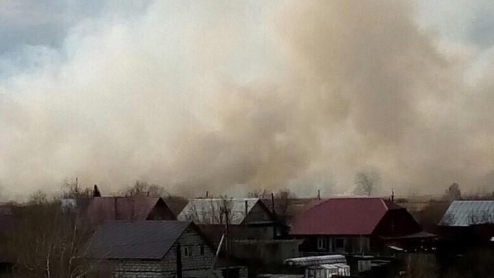 В Кургане ликвидировали крупный пожар возле микрорайона Тополя. Горели сухая трава и камыш