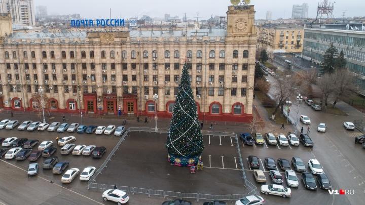 «Она еще идет из Москвы»: главную елку Волгограда откроют всего за три дня до Нового года