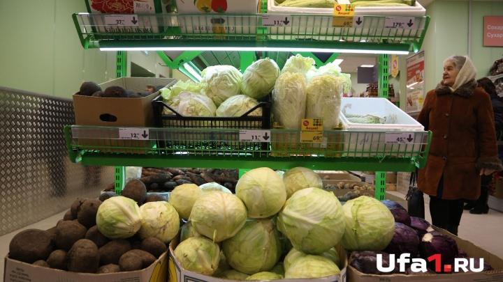 А цены все растут: в Башкирии подорожали картофель, лук и морковка, а капуста подешевела