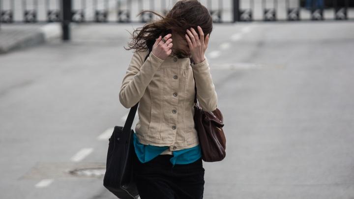 Ветер не утихнет: новосибирцев предупредили о непогоде