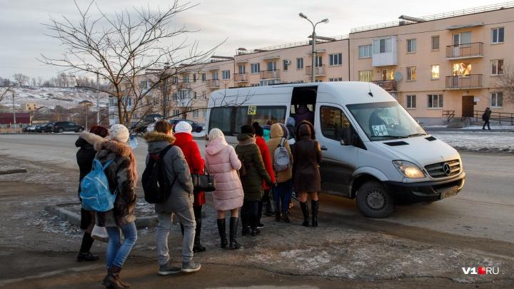 «Уже сегодня все опоздали на работу»: с волгоградских дорог выгнали больше 70 маршрутчиков