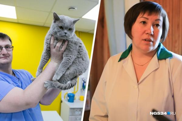 Николай Леонов и Наталья Демина ответили на главные вопросы о ветеринарии