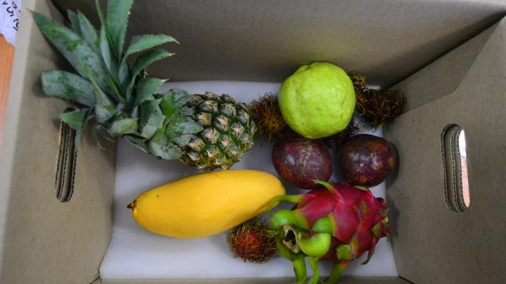 А как же манго из Таиланда? С августа для россиян ограничат ввоз фруктов в багаже и ручной клади