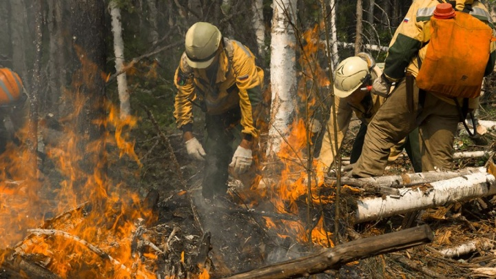 Пожарный заблудился в горящем лесу Эвенкии: ищут со вчерашнего дня