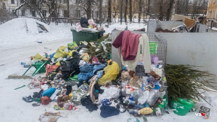 «Работы больше, чем рассчитывали»: регоператор пообещал вывезти мусор после публикаций V1.RU