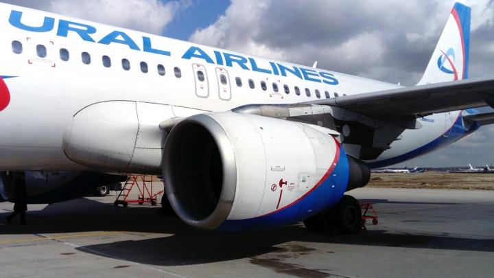 В Толмачёво появился прямой рейс в инновационный город Китая