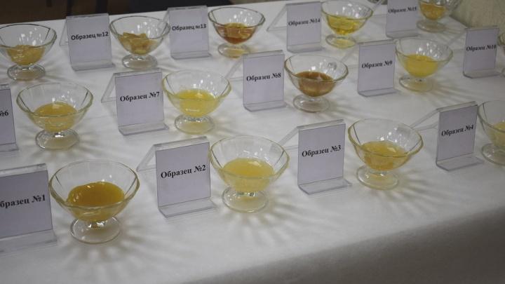 Проверка мёда: назван лучший сорт из магазинов Красноярска