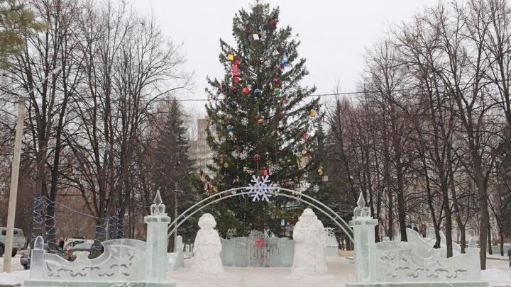 Знай наших: елка из Уфы обогнала по высоте московскую и питерскую