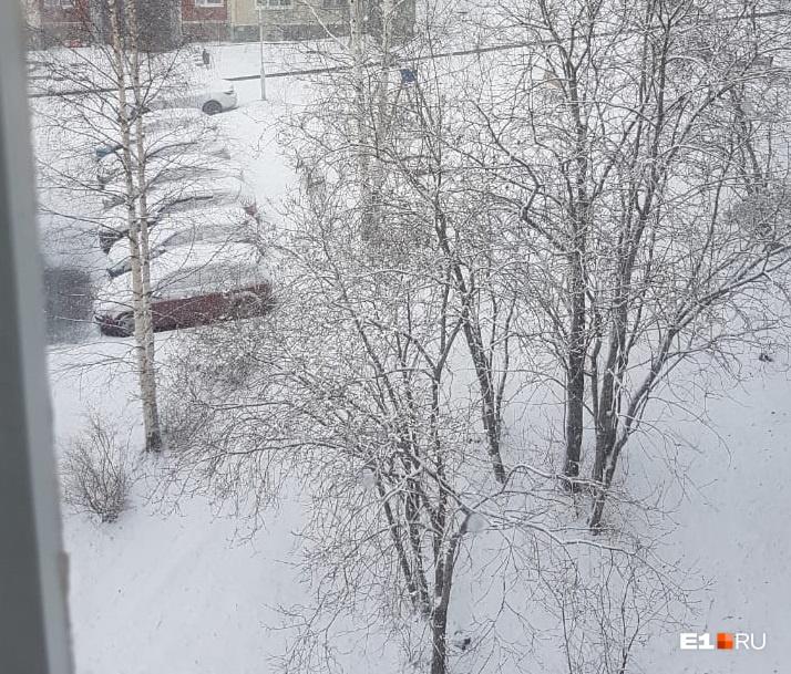Фото из Новоуральска