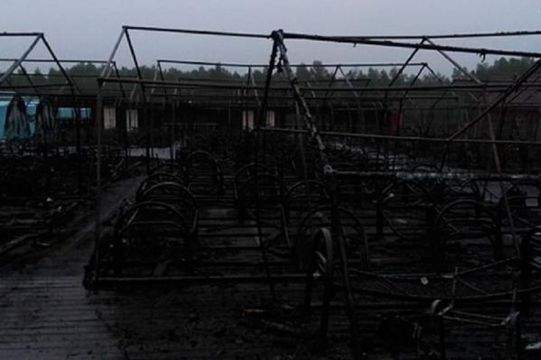 20 палаток из 26 сгорели