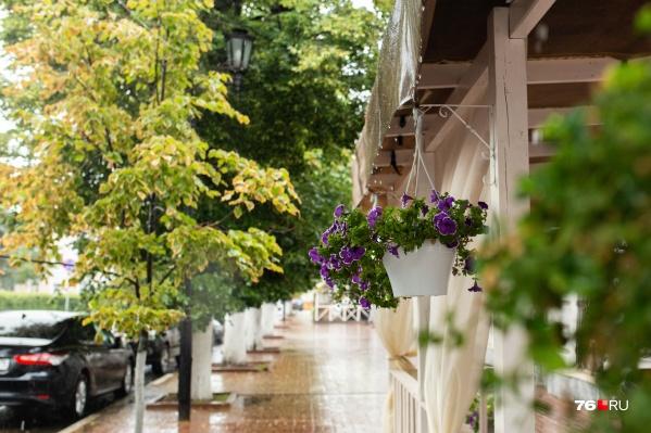 Бабье лето в августе — явление редкое