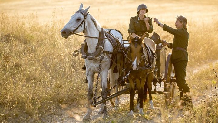 «Нам нужны телеги и партизаны»: волгоградцев зовут на кастинг к будущему фильму про войну