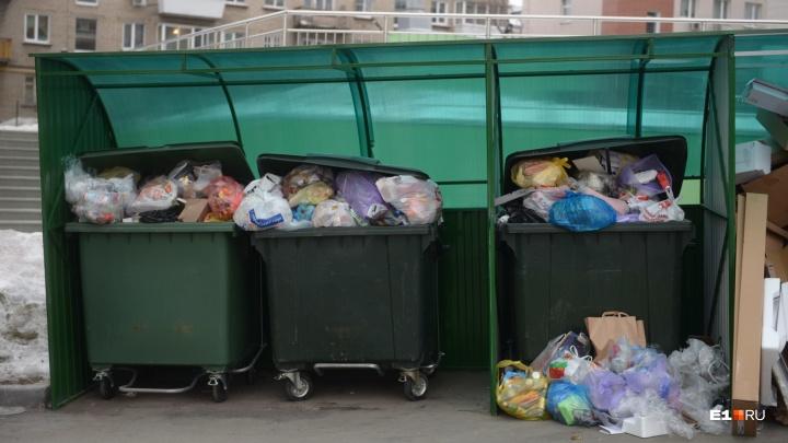 Прокуратура готова выслушать людей, страдающих от мусора. Где и в какое время можно пожаловаться
