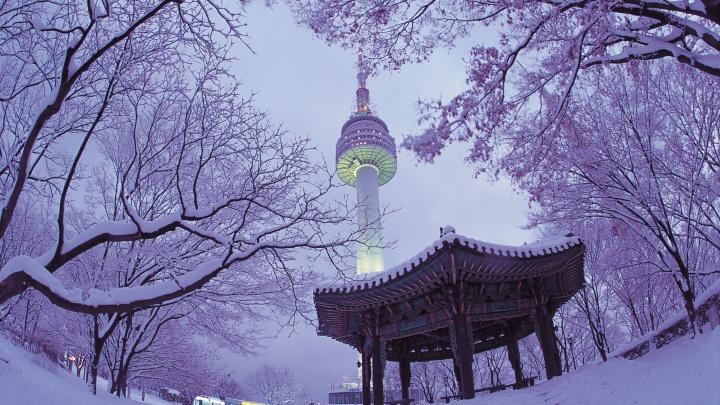 В Южную Корею зимой: чем удивит туристов страна высоких технологий и первозданной природы