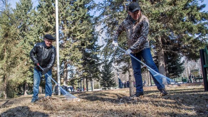 Новосибирский мэр и губернатор вышли на уборку улиц
