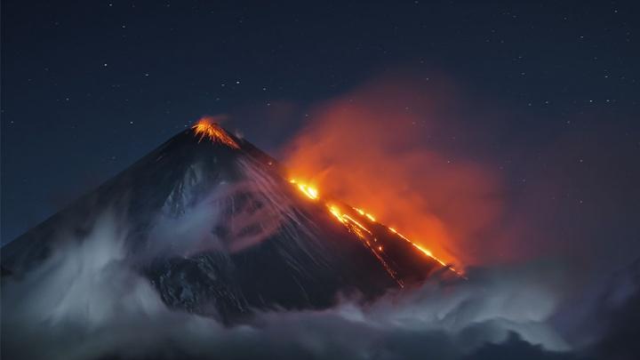 Лев в тумане и огненное дыхание планеты: в Екатеринбург привезли завораживающие фото дикой природы
