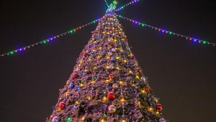 Ледяной трон и туннель света: любуемся елками и ледовыми городками Красноярска