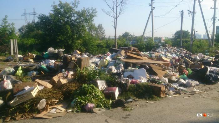 Горы мусора образовались за две недели